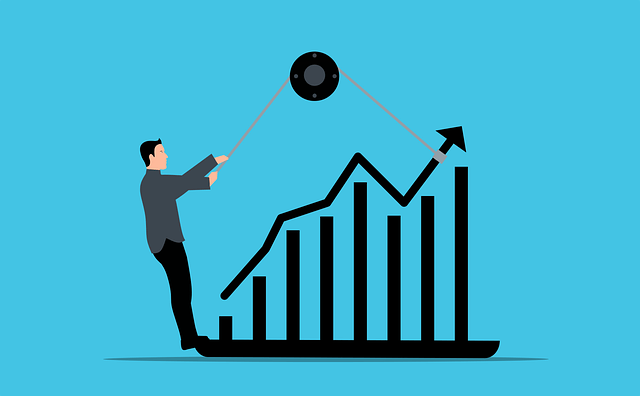 Allow our Small Business Accountants to Grow your Business
